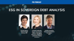 Sovereign Debt Analysis